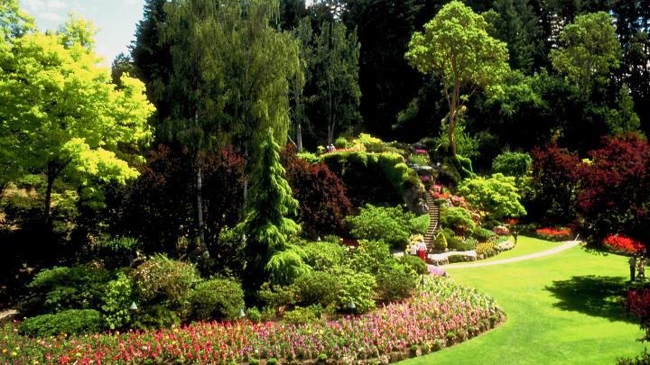 37 Best Landscaping Blog Names