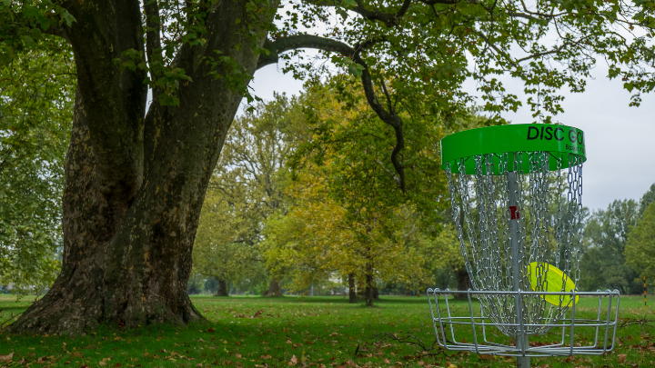 51 Best Disc Golf Slogans and Sayings