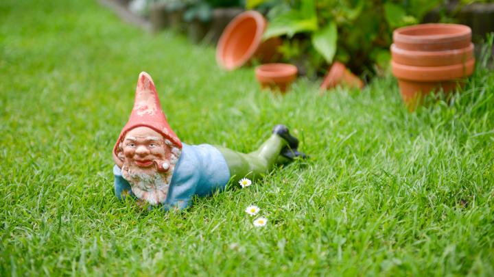 51 Clever Garden Gnome Names , BrandonGaille.com