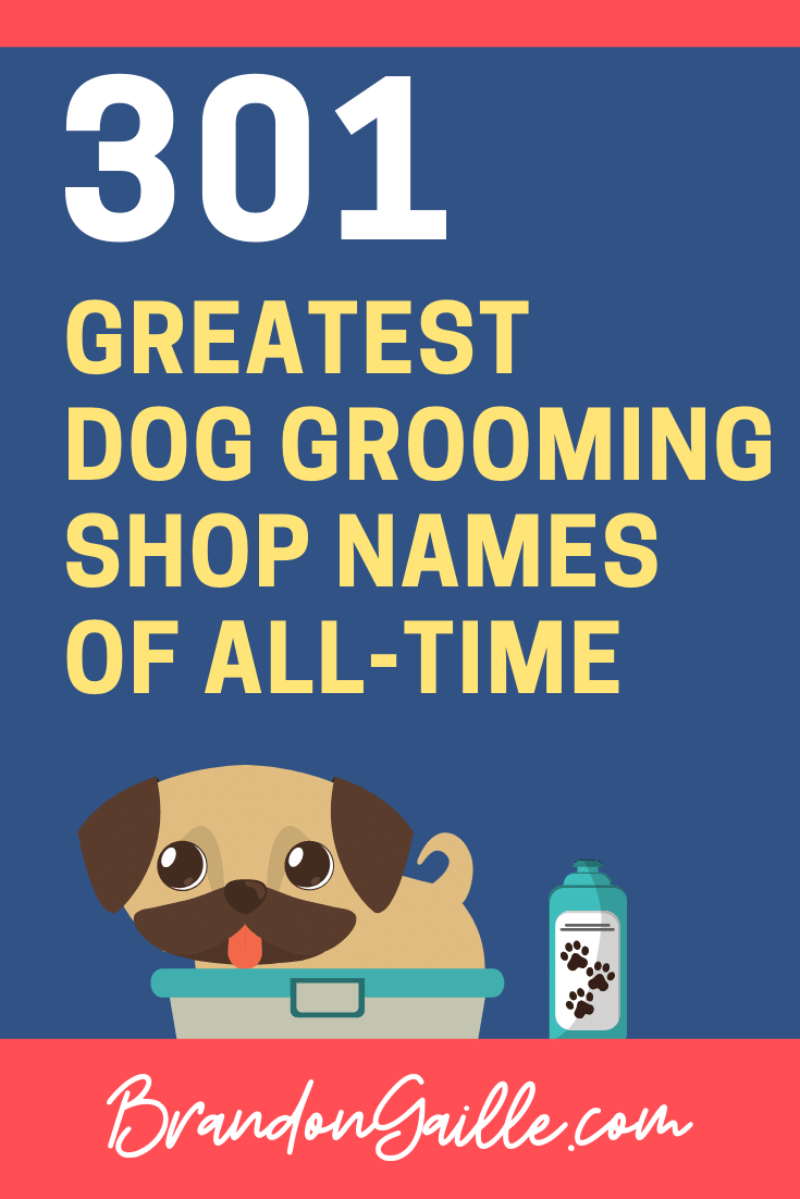 Dog Grooming Names