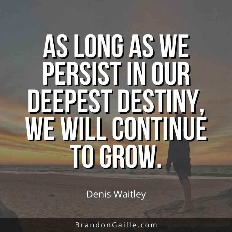 Denis-Waitley-Quote