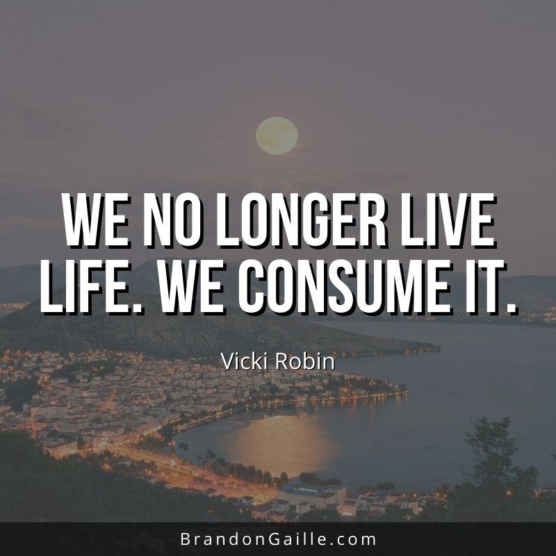 Vicki-Robin-Quote